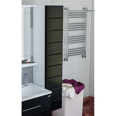 Шкаф-Пенал для ванной комнаты Санта Омега 30 подвесной Б/Ч